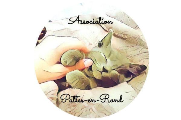 L'association Pattes-en-Rond