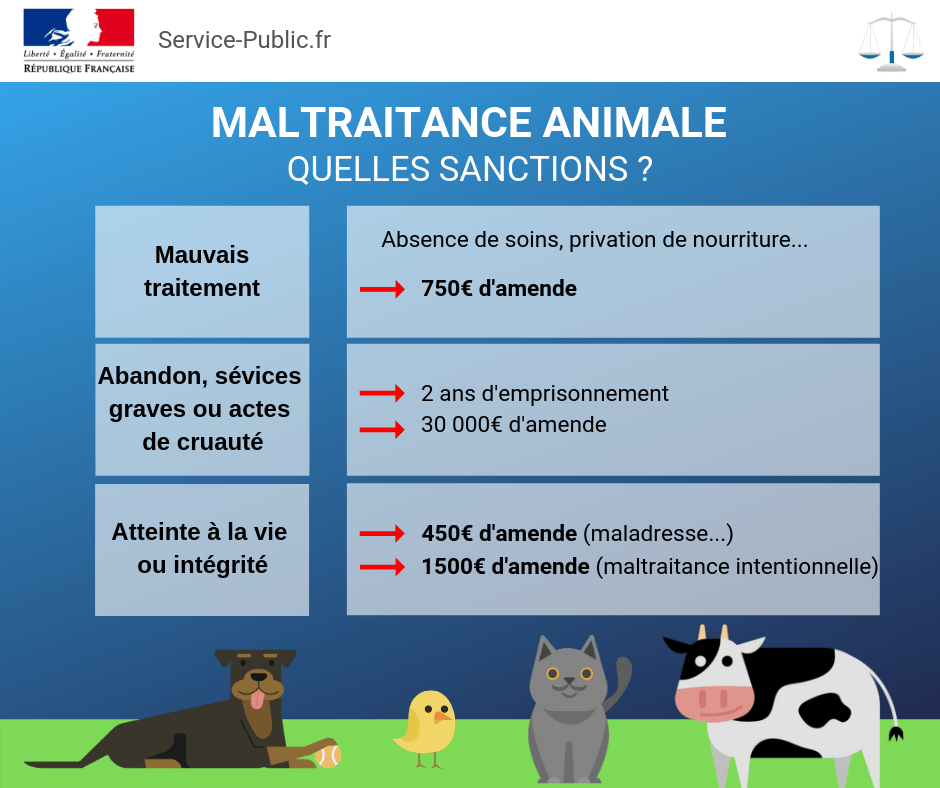 Les sanctions en cas de maltraitance animale