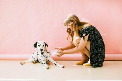 Les odeurs que votre chien déteste