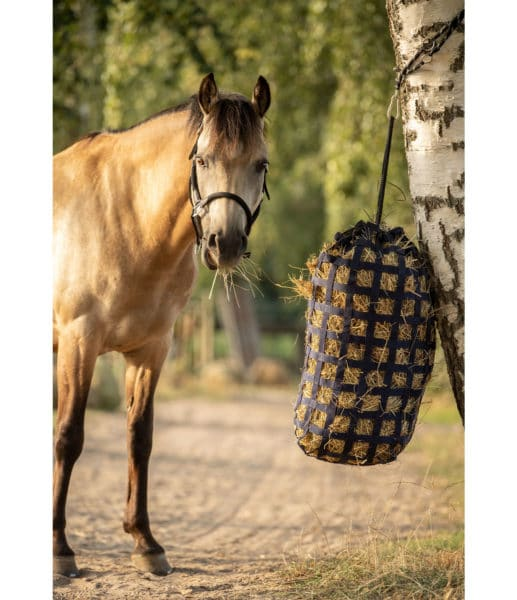 Le fourrage à la base de l'alimentation du cheval
